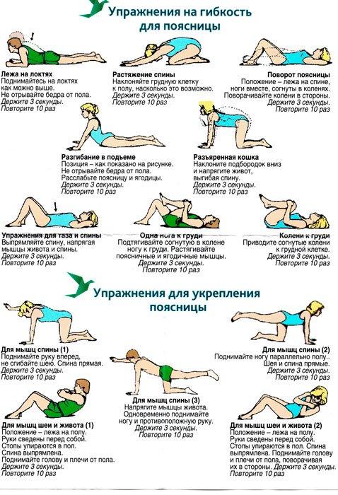 упражнения для гибкости и укрепления мышц поясницы