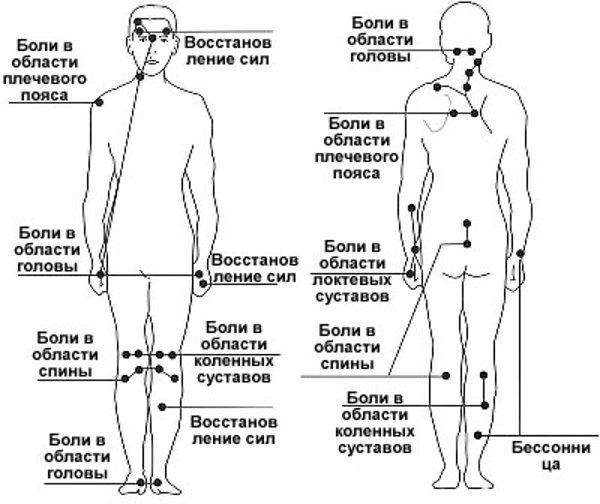 схема расположения точек акупунктуры на теле человека