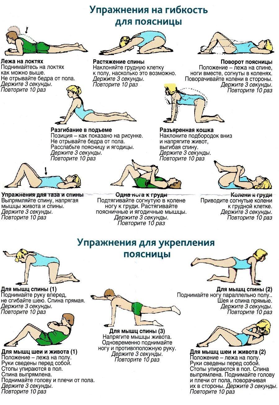 Упражнения для укрепления спины и поясницы в домашних условиях 301