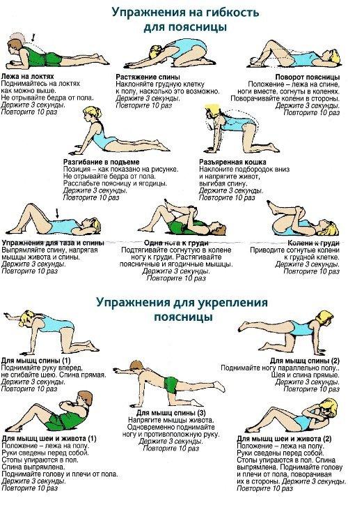 упражнения для гибкости и укрепления поясницы